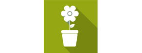 Flower On Pot Icon